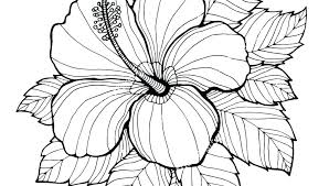 Big Flower Coloring Pages Large Flower Coloring Pages Hard Flower