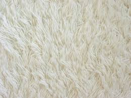 White Carpet Floor And White Carpet Texture
