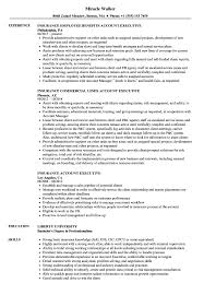 Executive Resume Sample Insurance Account Executive Resume Samples Velvet Jobs 26