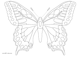 Butterfly Symmetry Coloring Page Best Confidential Outline Butterfly