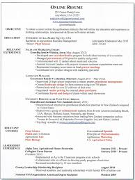 Sample Curriculum Vitae With Online Job Experience Resume Template