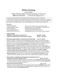 Cv London William Pointing Marketing Manager London Cv Dates