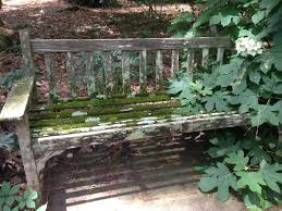 also located bench