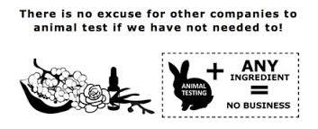 still fighting against animal testing no animal testing