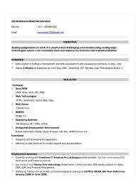 Resume Format For 2 Years Experience Resume Template Ideas