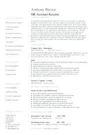 Hr Resume Objective Statements Customer Service Resume Objective