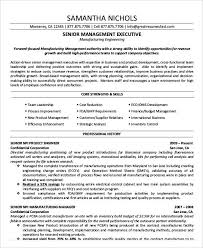 Best Executive Resume Templates