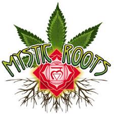 Image result for mystic roots