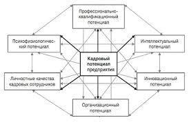 Реферат Управление конкурентоспособностью предприятия и пути ее  Рисунок 1 Структура кадрового потенциала