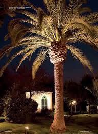 exterior lighting solutions nz. platek - 2100_medio_proiettore_led_dim1 pic.jpg. lighting solutionsaverage. landscape and garden exterior solutions nz