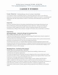 Resume Examples Career Objective