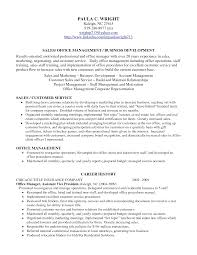 Resume Profile Section Examples Examples Of Resumes
