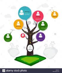 Family Tree Chart Stock Photos Family Tree Chart Stock