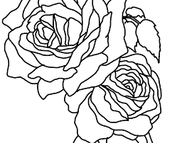 Pictures Of Flowers Coloring Pages Rose Flower Coloring Pages Free