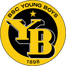 Kosovo is listed as xk. File Bsc Young Boys Logo Svg Wikipedia