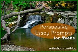 images about persuasive writing on pinterest  persuasive   images about persuasive writing on pinterest  persuasive essays persuasive writing and rubrics