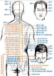 Bladder Meridian And Back Shu Bl 25 Acupuncture Point 4