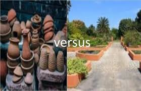 raised garden beds vs pots when to use
