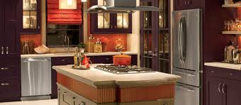 Orange Kitchens Fridge Cabinets Images Fabulous Home Design