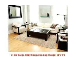 4 by 6 rug size designs how big is a 4x6