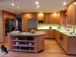 Redo Kitchen How To Redo Kitchen Cabinets Economically Kitchen Remodels