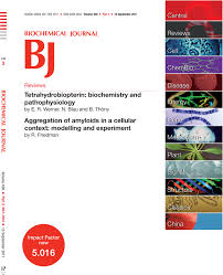 tetrahydrobiopterin biochemistry and pathophysiology tetrahydrobiopterin biochemistry and pathophysiology biochemical journal