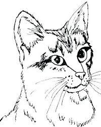 Kitten Printable Coloring Pages Kontaktimproorg