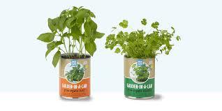 Hanging Kitchen Herb Garden 10 Best Indoor Herb Gardens In 2017 Indoor Gardens For Growing Herbs