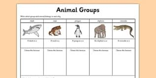 Animal Flow Chart Ks2 Ks2 Science Variation And Classification Worksheets Free Ks2