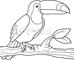 Small Picture Coloring Book Vector Art Thinkstock