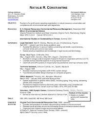 Attorney Resume Examples