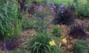how to plant a flower garden. Mulched Bed Small How To Plant A Flower Garden