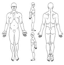 Blank Body Chart Sada Margarethaydon Com