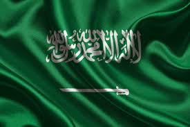 Image result for saudi arabia flag