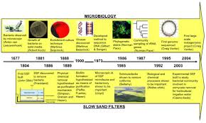 Timeline Of Major Events In The Fields Of Microbiology And
