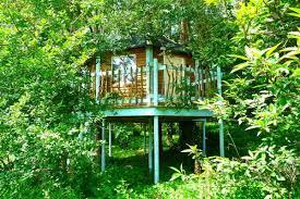 Luxury Family Tree House Holidays With Hot Tubs At Blackwood ForestFamily Treehouse Holidays Uk