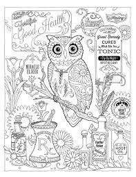 Creative Haven Owls Coloring Book By