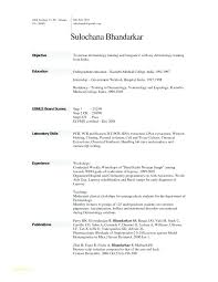resume fill in. Resume Fill In Fill In The Blank Resume And Resume Template Example