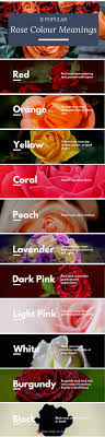 25+ unique Meaning of colors ideas on Pinterest | Color meaning chart, Color  meanings and Colour meanings