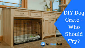 diy dog crate plans to build custom