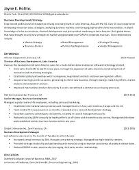 Application Development Manager Resume Business Project Manager