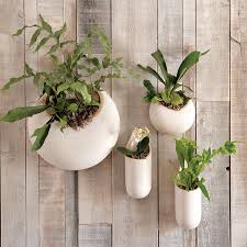 ceramic wall planters outdoor uk ideas