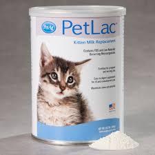 pe petlac kitten milk replacement kitten formula at drsfostersmith