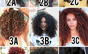 Hair Type Chart Gallery Of Chart 2019