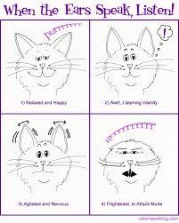Cat Body Language Chart Cat Body Language Catster