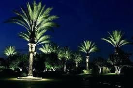 outdoor light up tree