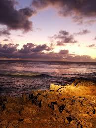 Turtle Bay Oahu Wikipedia