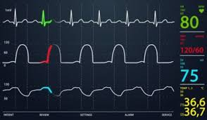 Medical Vitals Chart Vital Signs What Do They Reveal The Apprentice Doctor
