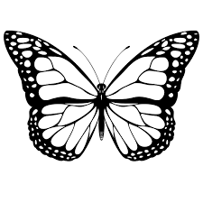 Free Monarch Butterfly Clipart Of Monarch