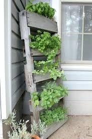 apartment herb garden. Vertical Gardening For Big Or Small Spaces Pallet Herb Gardens Apartment Garden